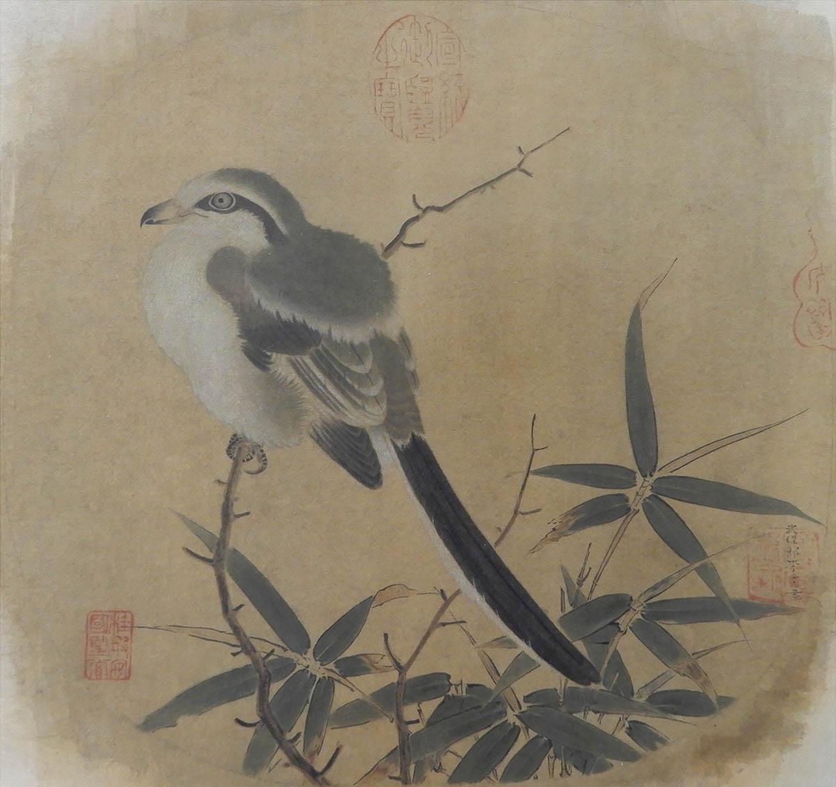 日本画専攻